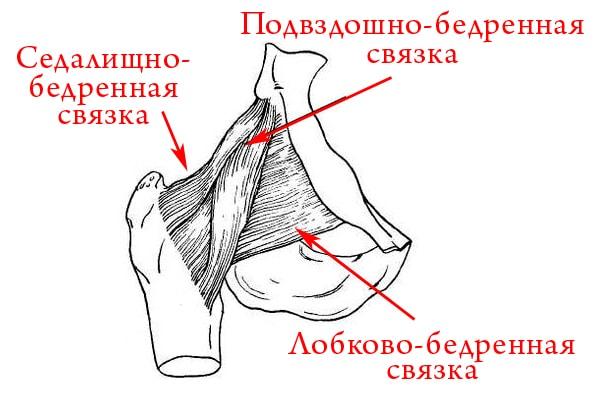 травмы связок сустава