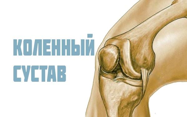 Завороты коленного сустава